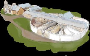 The Asylum & Separate Prison