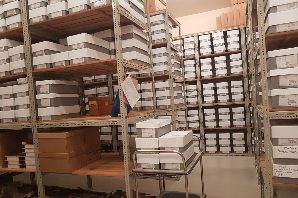 photo of collections store with new boxes in place